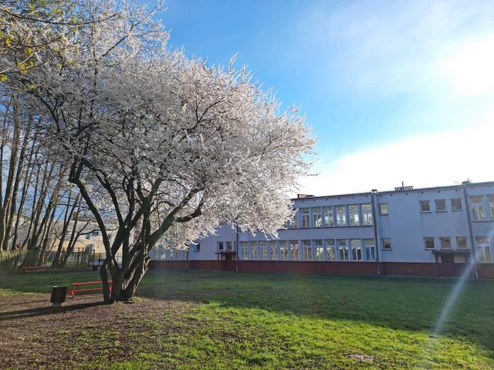 Przyszła wiosna